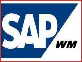 What is SAP Experience? - ERProof